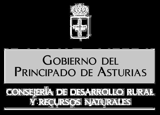 Consejería Desarrollo Rural